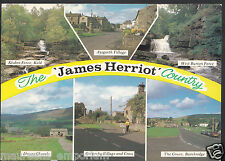 Yorkshire Postcard - Views of 'James Herriot' Country   RR923