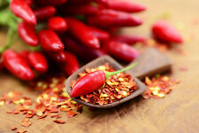 100+ Indian Bird's Eye Chilli Pepper Seeds Organic Chili Chilies Bulk Bird eye