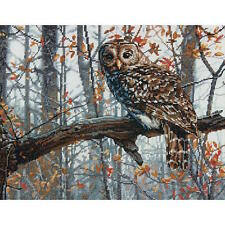 Dimensions Needlecrafts Wise Owl Counted Cross Stitch Kit
