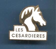 Pin's pin CHEVAL BLANC Centre Équestre les cesardieres Saint-Yon (ref 077)