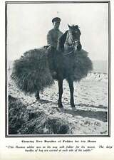 WW1 Russian Soldier With Fodder For His Horse
