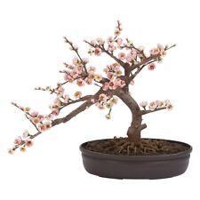 Cherry Blossom Bonsai Silk Tree, Pink