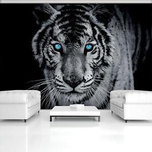 Tiger Afrika Tiere VLIES FOTOTAPETE schwarz und weiß Tapeten Rollen Wohnzimmer 3