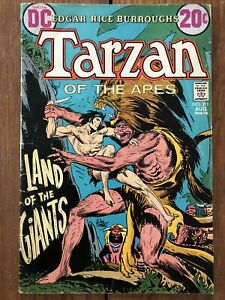 "Tarzan #211 (Aug 1972, DC) Joe Kubert cover, art & story; ""Land of the Giants"""