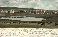 Hohenkurort Hahnenklee i. Harz c1905 Postcard