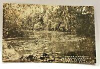 Vintage RPPC Postcard Hoosier Falls New York c.1907-1915 Ehmler Estate