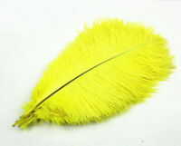 Wholesale 12-14inches/30-35cm ostrich Feathers wedding decoration 100pcs yellow