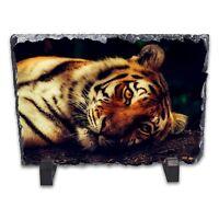 Resting Tiger Rock Slate Photo Frame - Rectangle