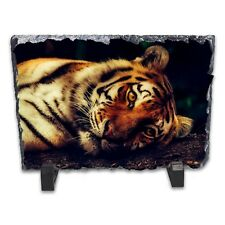 Resting Tiger Rock Slate Photo Frame - Rectangle