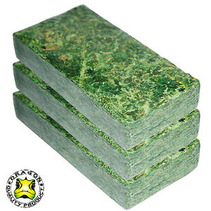 Dragon Terrarium Moos Sphagnum Moos grün 3 x 100 g Briketts NM-65