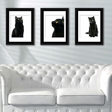 Décoration murale cadres Chat Noir Poster Art School café Office Home Décor