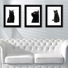 Wall Decoration Frames Black Cat Poster Art School Café Office Home Décor