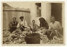 THE CORNHUSKERS: EASTERN EUROPEAN FAMILY HUSKS CORN TOGETHER  (VINTAGE RPPC)