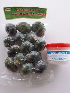 LIMESTONE PASTE YOUNG BETEL NUTS Areca Catechu FREE PRIORITY SHIPPING US SELLER