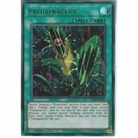 LED5-EN047 Predapractice | 1st Edition | Ultra Rare YuGiOh Trading Card Game TCG