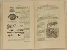 RICCARDO BESTA ANATOMIA FISIOLOGIA ANIMALI ANIMALS ZOOLOGIA ZOOLOGY NATURALE