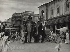1928 Original INDIA Srirangam Temple Procession Elephant Photo Art By HURLIMANN