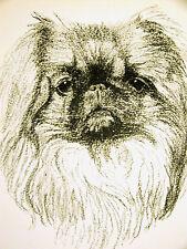 Francis Wardle 1935 Pekingese Vintage Dog Print Matted