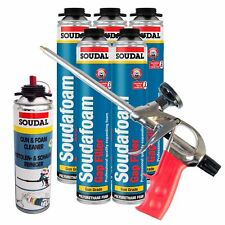 Expanding Foam Kit PU Polyurethane Professional Gun 5 x Cans 1 x Cleaner Kit 2