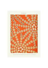 Japanese 1902 Art Pattern Print Shin-Bijutsukai Red Flower Giclee Poster