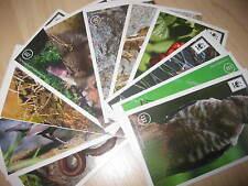"""EDEKA Sticker 2013 - UNSER WALD """" 15 Sticker aussuchen"""