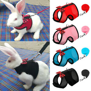 Small Animal Harness Leads Hamster Rabbit Cat Ferrets Squirrel Rat Vest Clothes