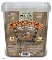 Delicia 750 g Mehlwürmer im Eimer Vogelfutter Insektenfutter Vogel