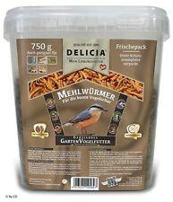Delicia 750 g Mehlwürmer im wiederverschliessbaren Eimer Insektenfutter Vogel