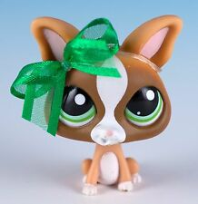 Littlest Pet Shop Chihuahua #1568 Brown With Green Eyes