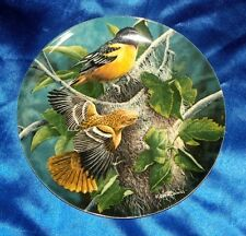 The Baltimore Oriole Birds Of Your Garden Collection Knowles Collector Plate