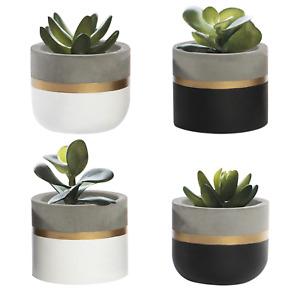 Cement Succulent Pots Set of 4 Artificial Succulent Plants For Indoors M&W
