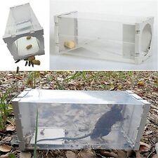 Rat Trap Humane Box Mice Cage Live Animal Safe Catch Mouse BAIT Control Bottle