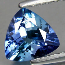 Trillion Transparent Loose Tanzanites