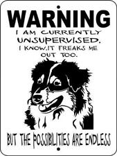 32 Australian Shepherd Aluminum Dog Sign 9 x 12