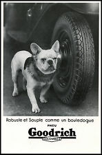 FRENCH BULLDOG FRENCHI BOULEDOGUE FRANCAIS BLACK & WHITE DOG PHOTO POSTCARD