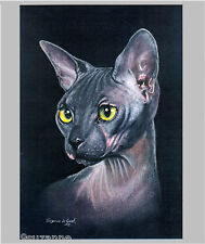 Sphynx Cat print large limited edition from original painting by Suzanne Le Good