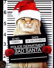 Orange Kitten Cat Santa Hat Mugshot Police Lineup - Christmas Greeting Card NEW