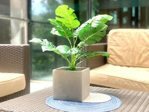 Eduard Square Concrete Planter Planter Flower and Plant Pot Container for Garden