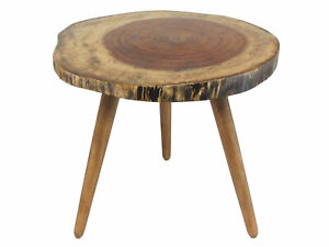 Natural Wood Tree Trunk Slab Accent End/Coffee Table