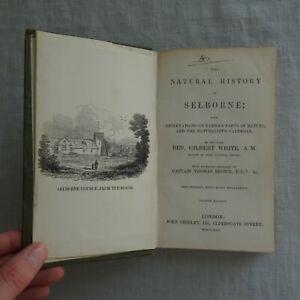 The Natural History of Selborne - Rev. Gilbert White - Illustrated - 1845