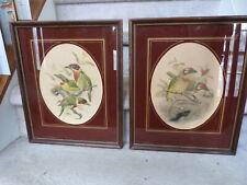2 ANTIQUE c. 1900 J. G. Keulemans Chromolithograph Bird Prints GREAT Frames