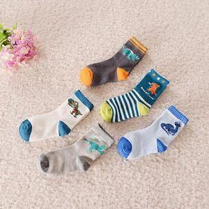 BULK... 5 pairs Kids Boys Dinosaur Theme Casual Socks ..fits 4-6-8 years