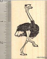 Ostrich rubber stamp H11407  WM African bird wildlife