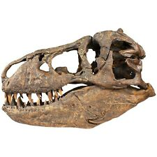 Master Replicas Group MRG Smithsonian T.rex Skull Replica 1/2 Scale LOWER PRICE!