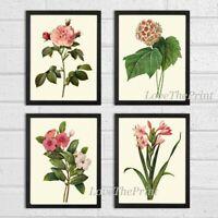 Unframed Botanical Print Set 4 Antique Pink Flowers Illustration Home Wall Art
