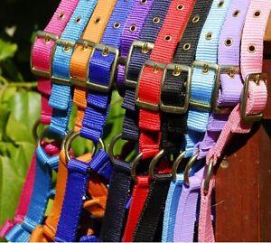 Adjustable Horse Headcollar - Shetland,Pony,Cob,Full  - Head Collar- FREE P&P