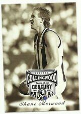 AFL 1997 COLLINGWOOD #33 SHANE MORWOOD SPICERS TEAM OF THE CENTURY CARD