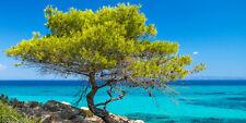 """Infrarotheizung Elegance - Glas rahmenlos, 700 Watt, Motiv """"Griechenland"""""""