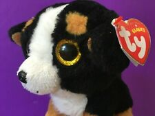 🌺 Rare 💙 Roscoe 🧡 plush 💚 6� Puppy 💛 Ty Beanie Babies Bernese Mountain Dog