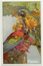 65/539 SAMMELBILD - TROPISCHE VOGELWELT - PAPAGEI ARA ORCHIDEEN SCHUTZFARBEN